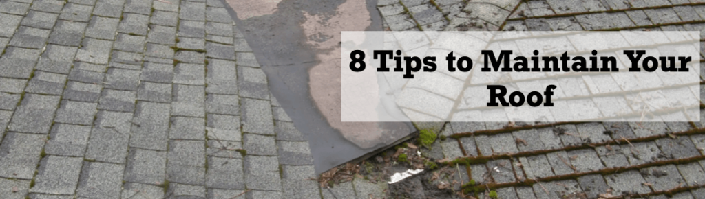 8 Tips to Maintain Your Roof